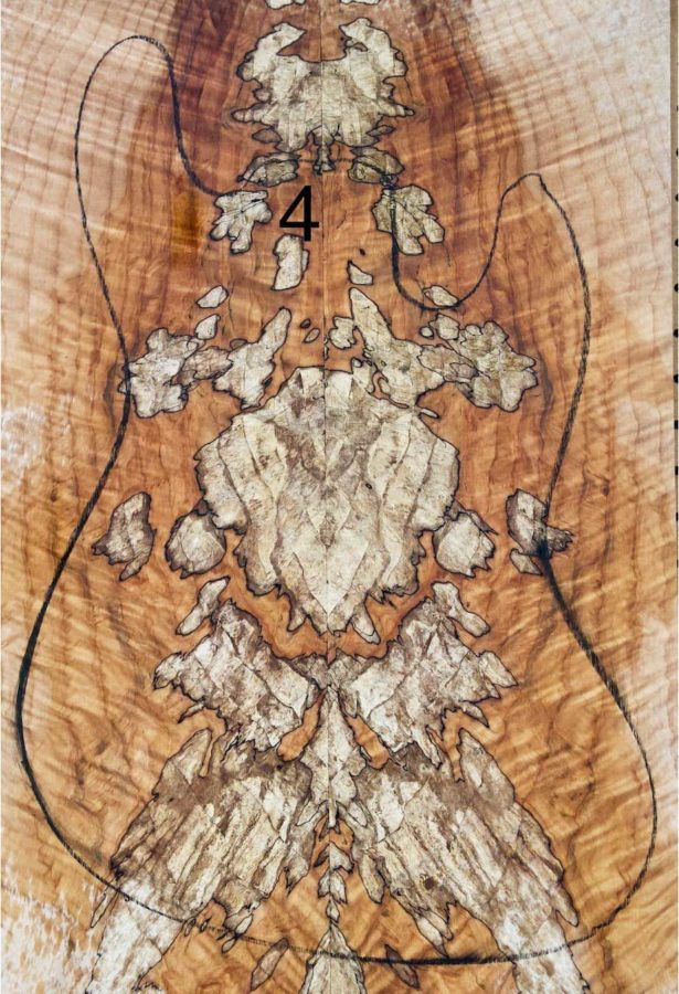 3.2.20_MG_Spalted_4